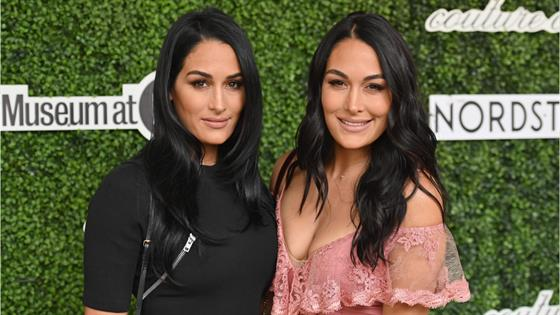 Bella Twins Document Postpartum Life 2 Weeks After Giving Birth - E! Online