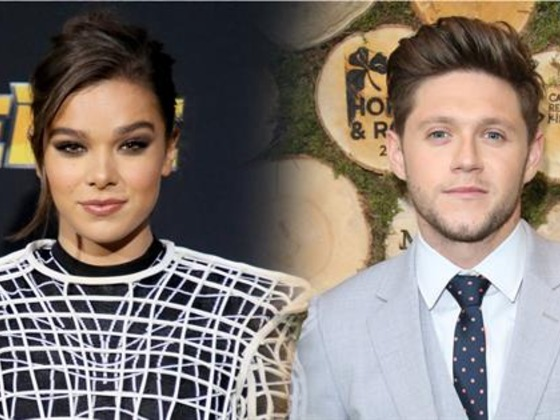 Did Hailee Steinfeld and Niall Horan Split?