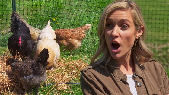 Kristin Cavallari's Gone Country!