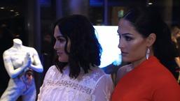 Nikki & Brie Bella Attend Women's Image Awards