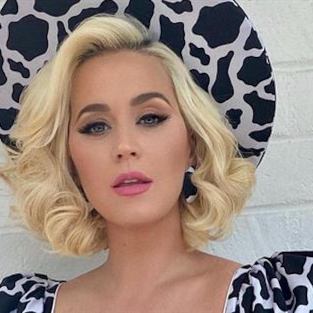 Katy Perry Calls Social Media the