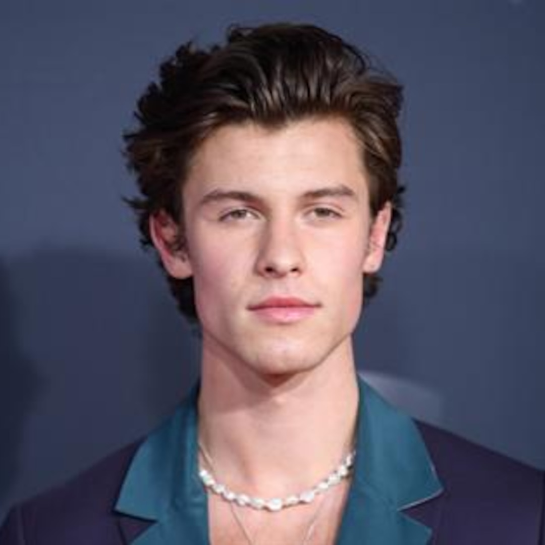 Shawn Mendes' Best Bits From