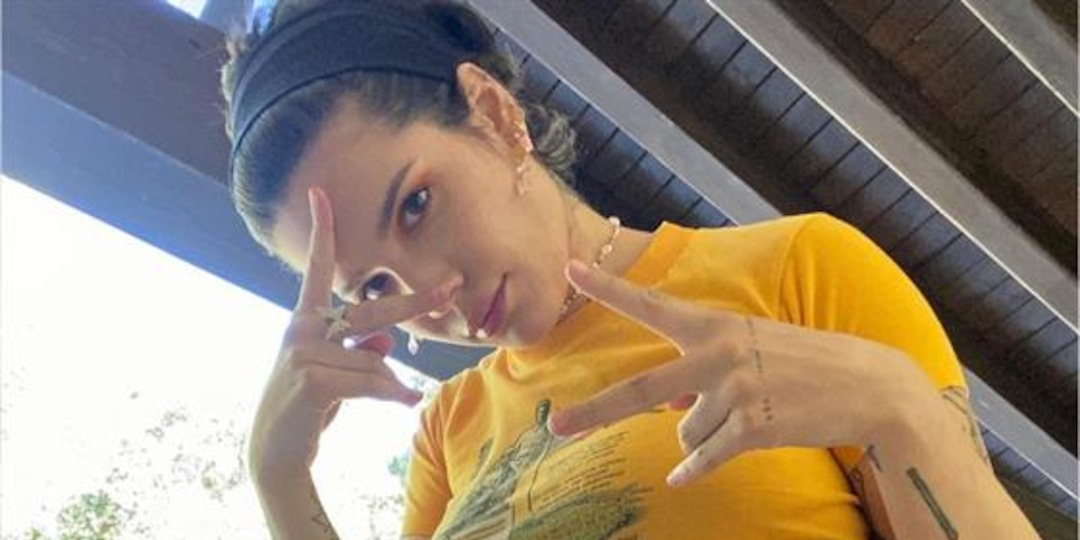 """Halsey Responds to Fan Who Claims """"You've Been Pregnant Forever"""" - E! Online.jpg"""