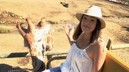 It List: California - Safari West in Santa Rosa