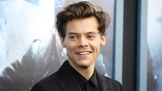 Harry Styles discussions questions about his sexuality