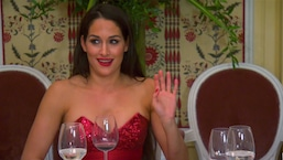 Nikki Bella's Bachelorette Party Dinner Gets Weird