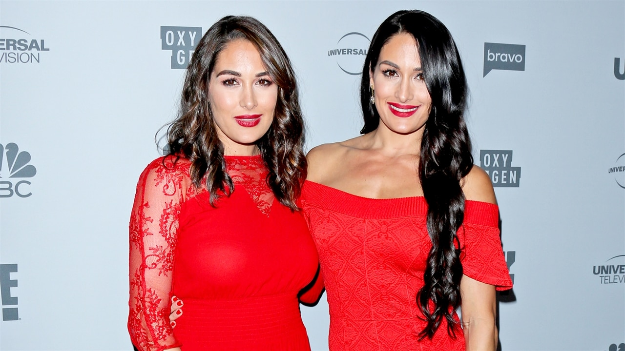 Celebrate Brie & Nikki Bella's Birthday By Revisiting Their Most Relatable Twin Moments